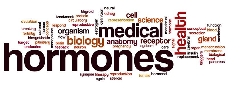 hormones1