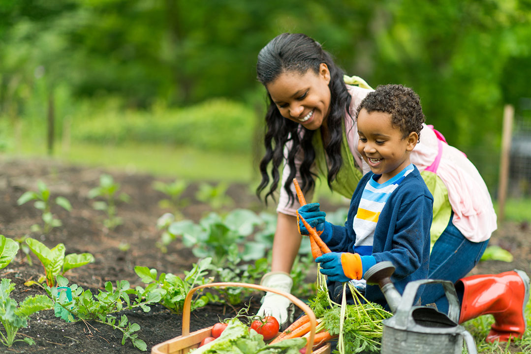 vegetable gardens to grow with your kids - mom and son plant garden