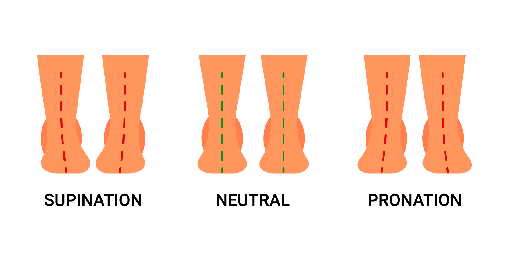 foot supination and pronation