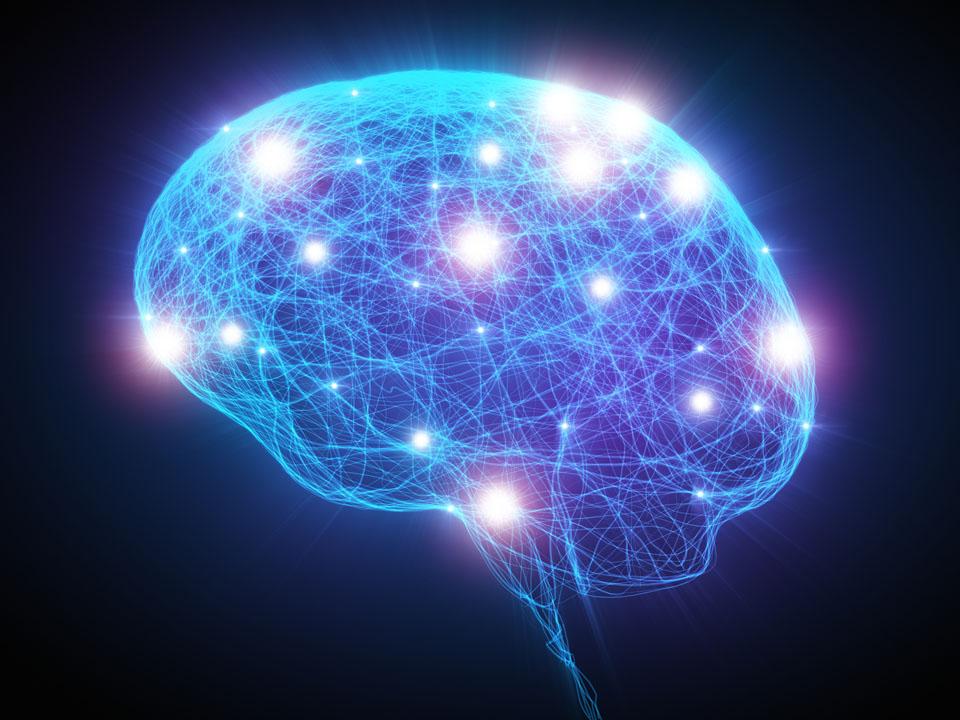 3d render de alta resolución de una cabeza humana con neuronas en el interior