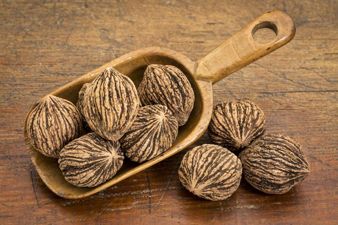 black walnuts (in shells) in a wooden scoop
