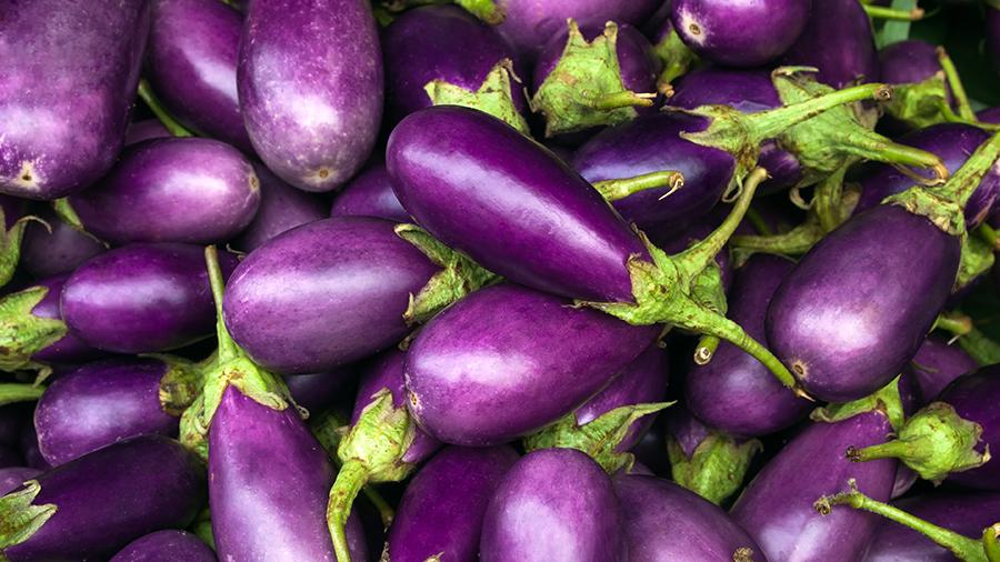 purple eggplant at market - grilled eggplant recipe - veggie bowl - alignlife