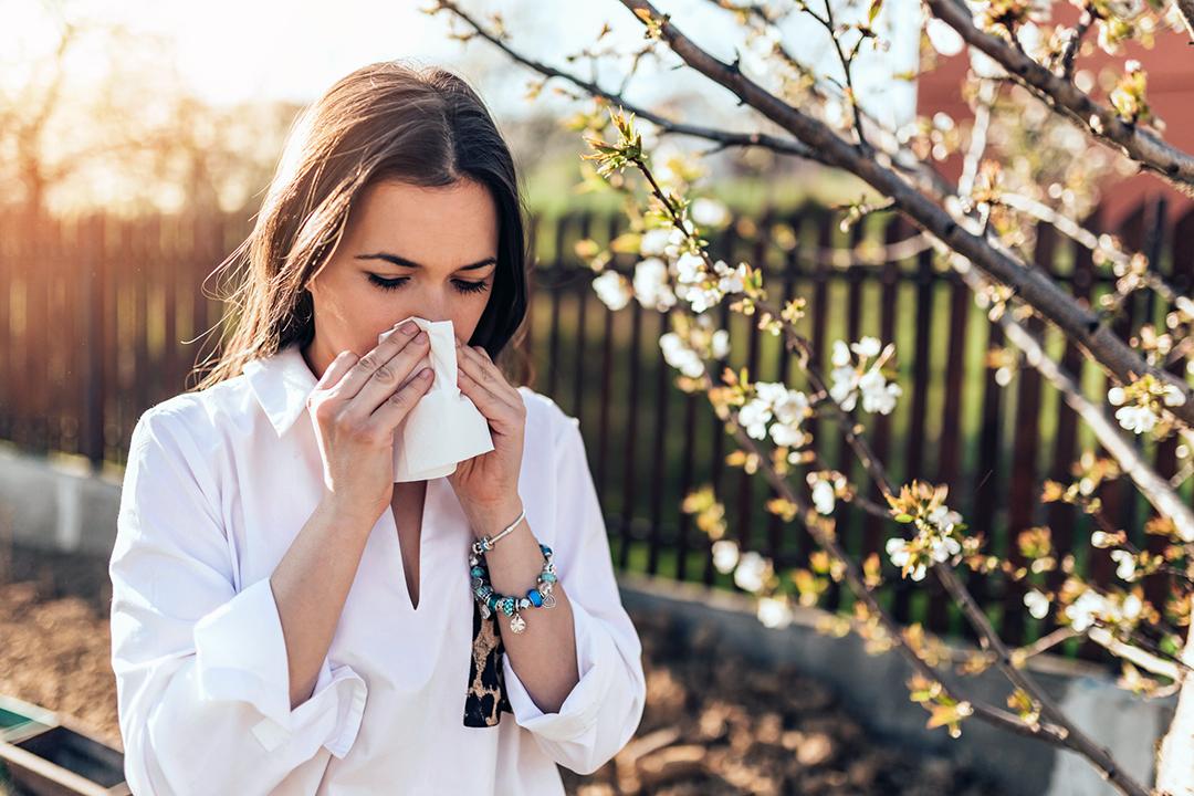 seasonal spring allergies - woman sneezing into a tissue - spring flowers