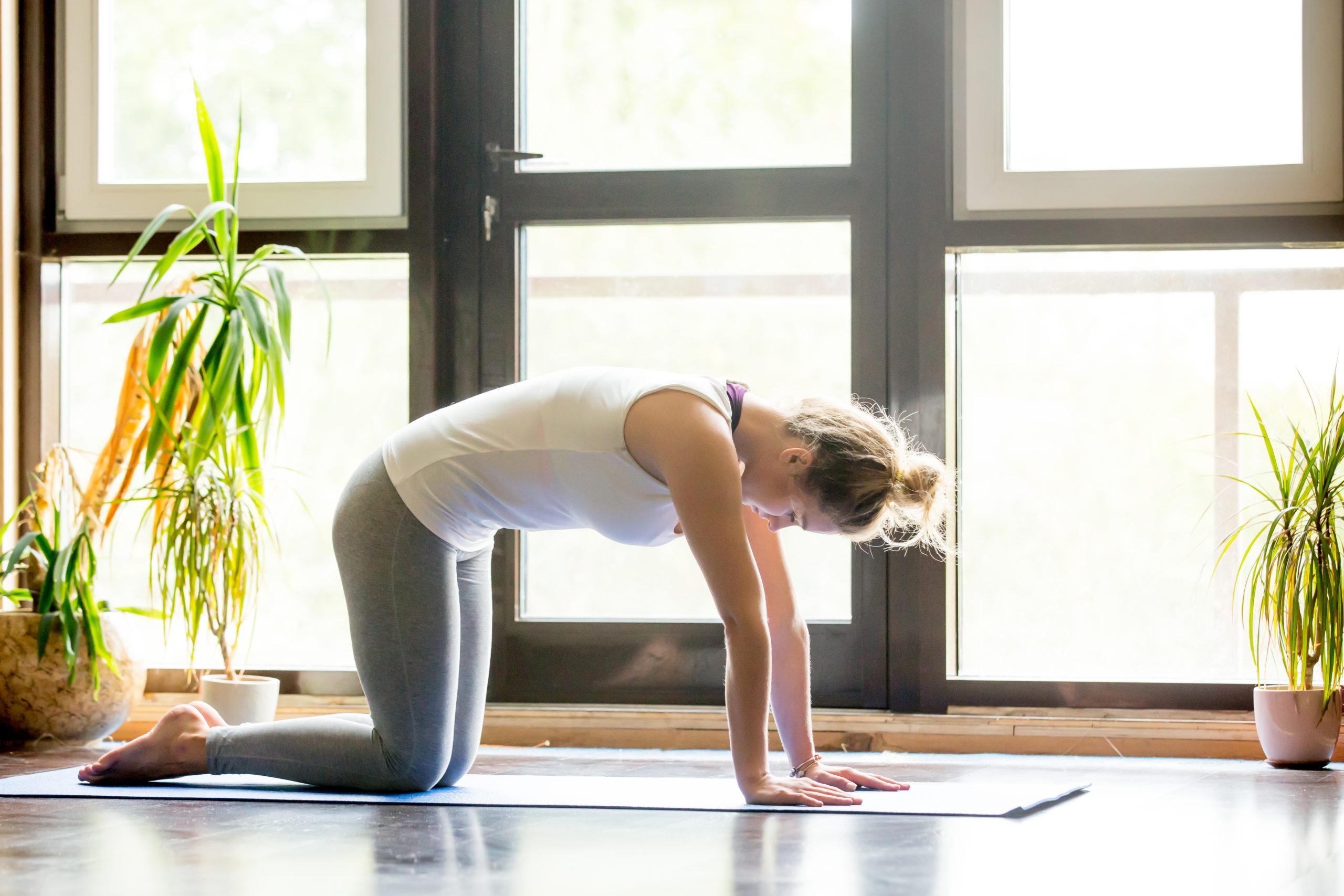 woman cat cow pose - morning yoga