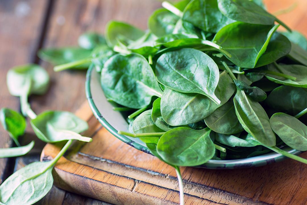 hojas de espinaca para energía durante todo el día