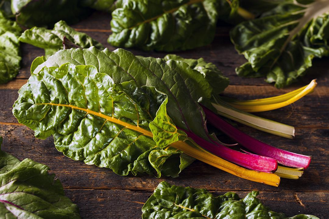 Acelgas verdes saludables para energía durante todo el día